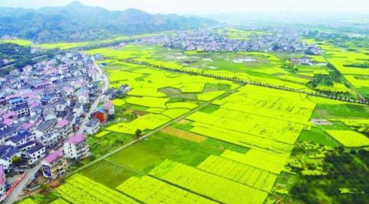 转化生态优势 发展美丽经济