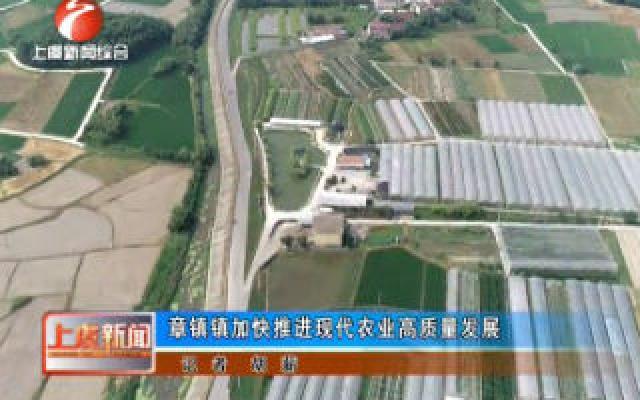 章镇镇加快推进现代农业高质量发展