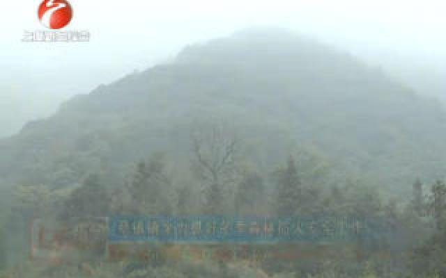 章镇镇全力抓好冬季森林防火安全工作