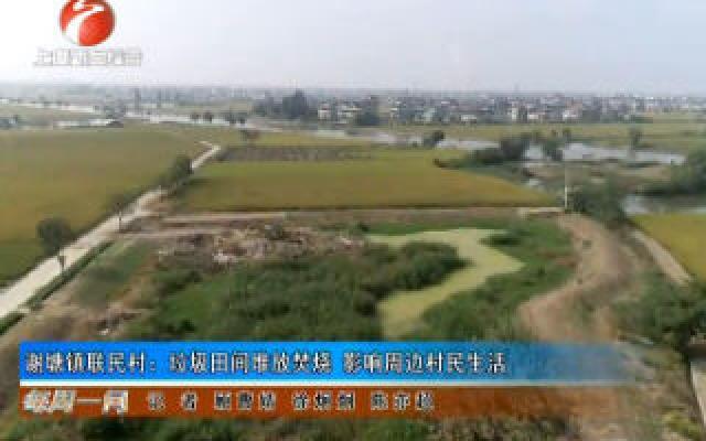 谢塘镇联民村:垃圾田间堆放焚烧 影响周边村民生活