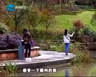 11月13日 衢州新闻