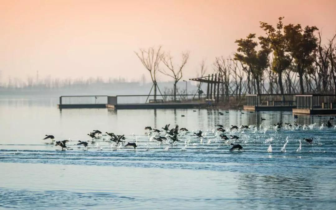 浙江1-9月水環境質量公布  你那兒水質如何