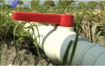 小水管彰显大作为 农田灌溉有新招
