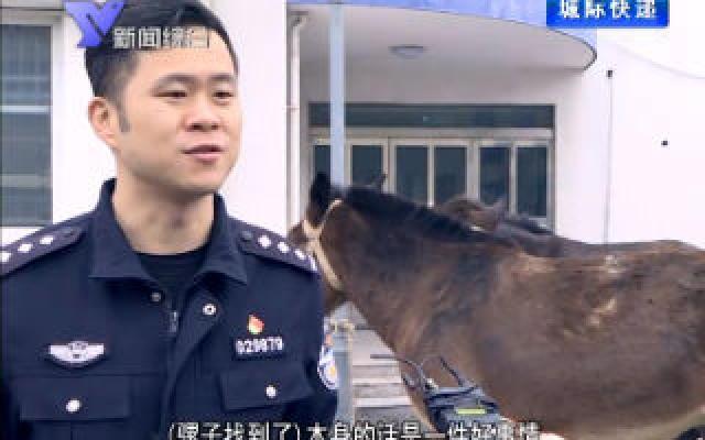12月1日 余姚新聞