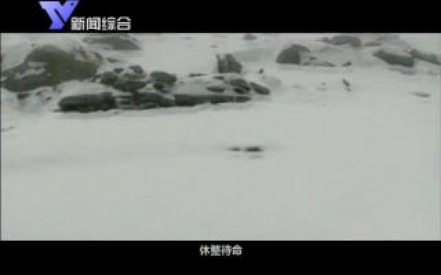 登珠峰的人(上)