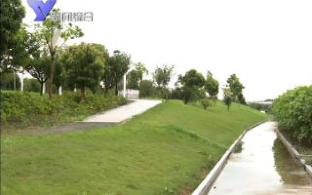 """台风""""黑格比""""降级  全市河网水库水位基本稳定"""