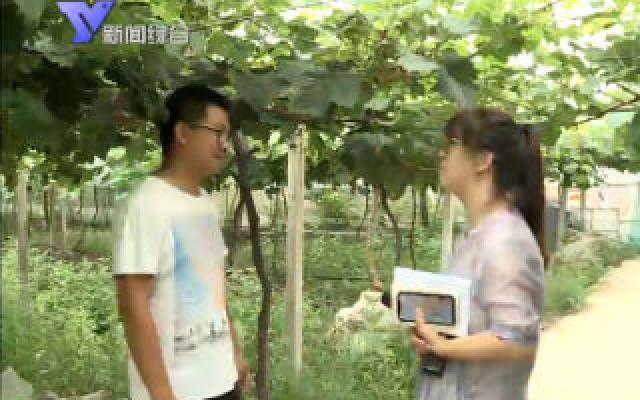 8月8日 余姚新闻