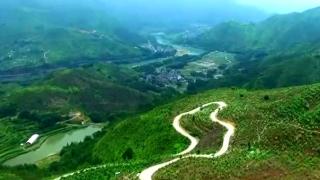 """深化林业综合改革促进""""三产""""融合发展"""