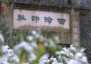 终于,雪来了!杭州有雪,西泠不冷