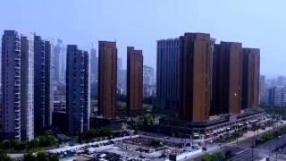 杭宁温新招实招频出 助推高质量发展