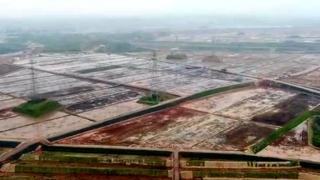 衢江:主打现代农业 万亩荒山变良田