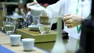 茶博会问茶:对标红酒,还是咖啡?