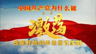 """""""中国共产党为什么能""""第三季《激荡——改革开放40年的浙江实践》嘉兴篇:城镇乡村各自芳华"""