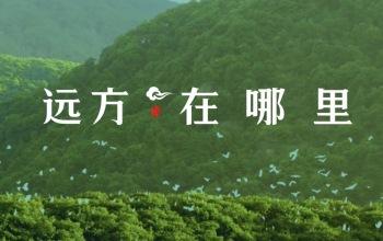 除了遥远,远方还有什么? 《还有诗和远方·诗画浙江篇》发布概念宣传片