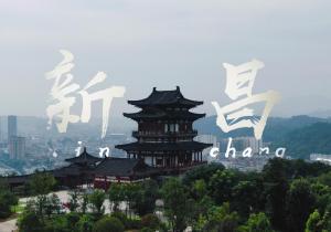 华少、张绍刚、胡海泉、郦波、尚雯婕开启远方之旅《还有诗和远方·诗画浙江篇》周日开播