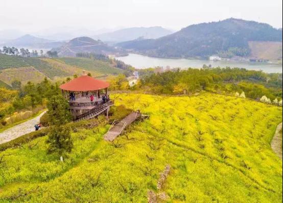 國內第一部地方性美麗鄉村建設法規今天在湖州發布361.png