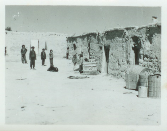 """沙漠深处""""贫民窟的百万富翁""""663.png"""