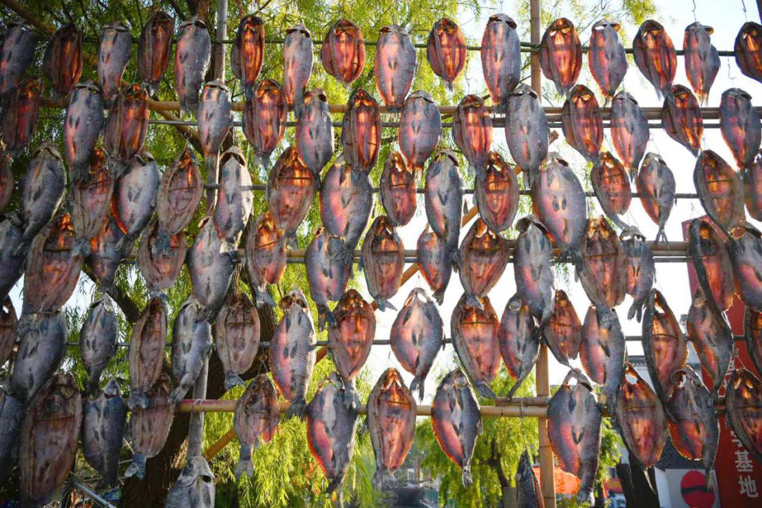 湖州南浔11届鱼文化节73.png