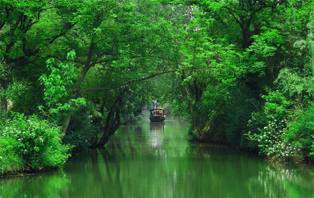 如今的西溪湿地野趣横生、景色怡人。(图源:西溪湿地)