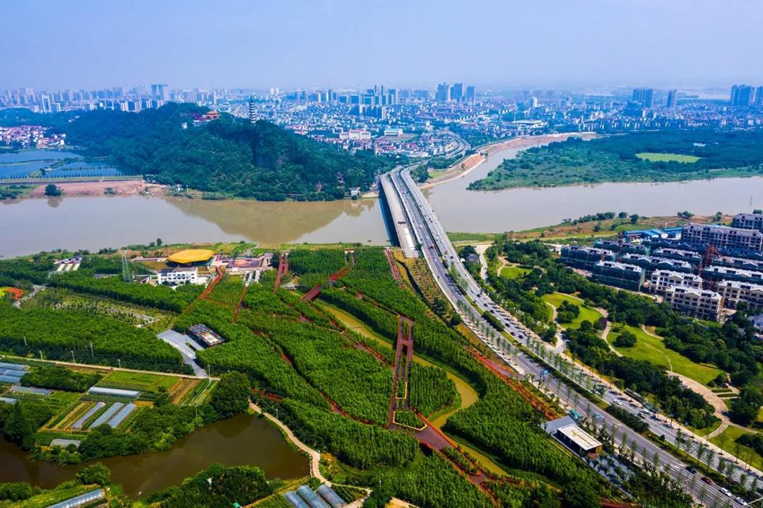 俯瞰扬子江生态公园和三江六岸.jpg