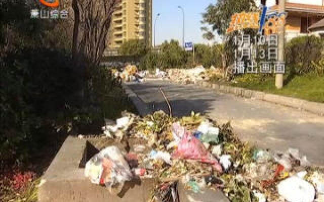 报道反馈:古海塘路绿化带垃圾已清理干净