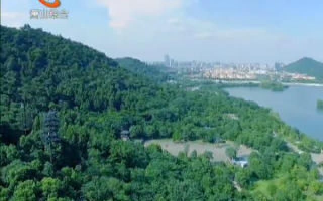 我區新增2個省級森林城鎮