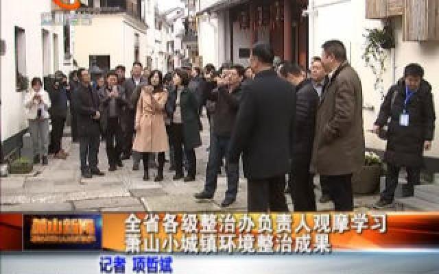 全省各級整治辦負責人觀摩學習蕭山小城鎮環境整治成果