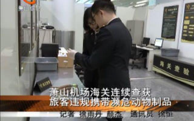 蕭山機場海關連續查獲一批旅客違規攜帶瀕危動物制品