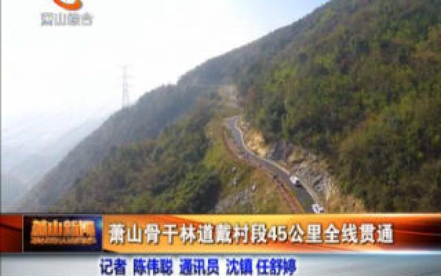 蕭山骨干林道戴村段45公里全線貫通