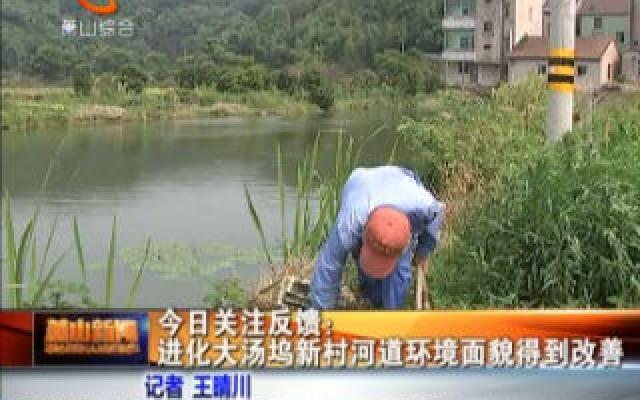 今日关注反馈:进化大汤坞新村河道环境面貌得到改善