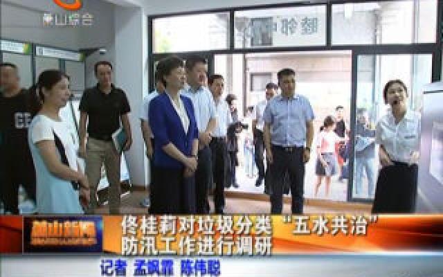 """佟桂莉对垃圾分类、""""五水共治""""、防汛工作进行调研"""