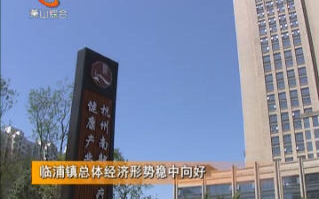 临浦镇总体经济形势稳中向好