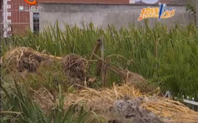 生活污水处理终端池出现问题 村民期盼加快提升改造