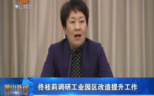 佟桂莉调研工业园区改造提升工作