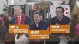《乡村振兴战略大家谈》第二集安吉县鲁家村:聚焦产业兴旺